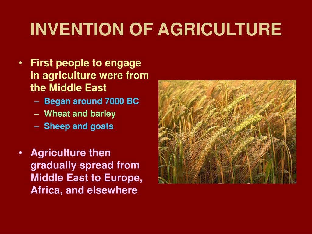 invention of agriculture l.