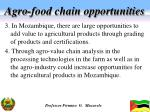 agro food chain opportunities1