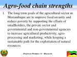 agro food chain strengths