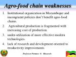 agro food chain weaknesses