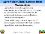 agro value chain lessons from mozambique