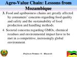 agro value chain lessons from mozambique1