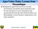 agro value chain lessons from mozambique5