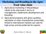 marketing and branding in the agro food value chain