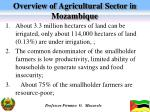 overview of agricultural sector in mozambique1