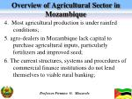 overview of agricultural sector in mozambique2