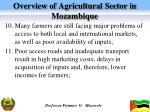 overview of agricultural sector in mozambique4