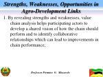 strengths weaknesses opportunities in agro development links