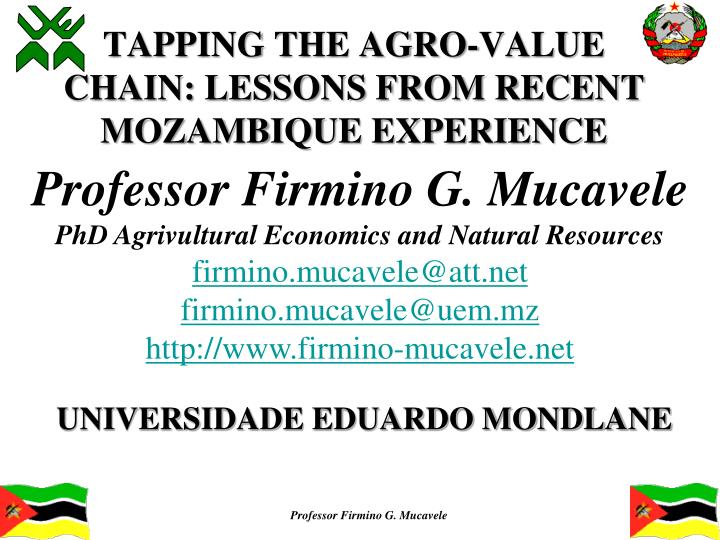 tapping the agro value chain lessons from recent mozambique experience n.