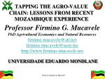 tapping the agro value chain lessons from recent mozambique experience