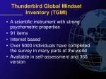 thunderbird global mindset inventory tgmi