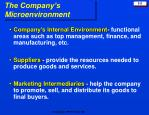 the company s microenvironment