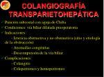colangiograf a transparietohep tica