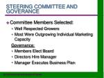 steering committee and goverance