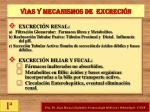 vias y mecanismos de excreci n