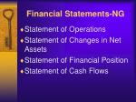 financial statements ng