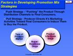 factors in developing promotion mix strategies