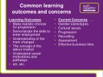 common learning outcomes and concerns
