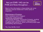 not just ewb iag can be pwb and flows throughout