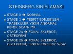 steinberg siniflamasi