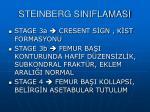 steinberg siniflamasi1