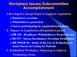 workplace issues subcommittee accomplishment