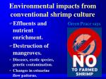 environmental impacts from conventional shrimp culture