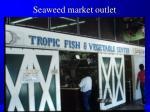 seaweed market outlet