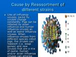 cause by reassortment of different strains