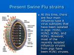 present swine flu strains