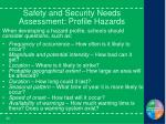 safety and security needs assessment profile hazards