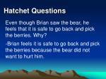 hatchet questions29