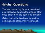 hatchet questions31