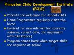 princeton child development institute pcdi