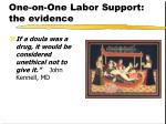 one on one labor support the evidence