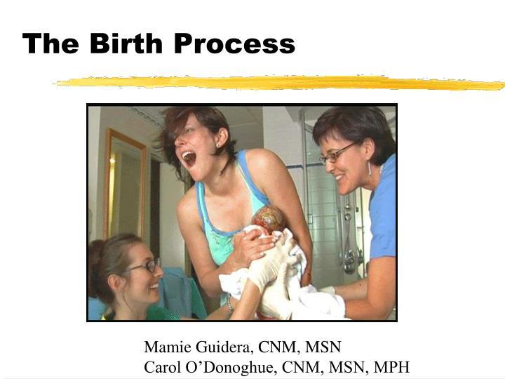 the birth process n.
