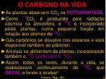 o carbono na vida