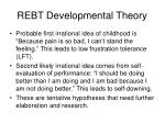 rebt developmental theory18
