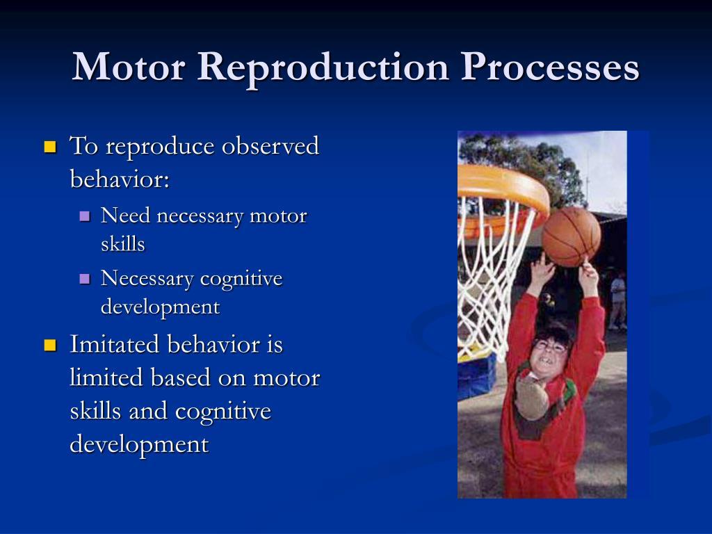 Ppt Children See Children Do Observational Learning Theory Albert Bandura Powerpoint
