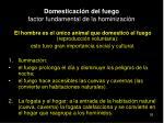 domesticaci n del fuego factor fundamental de la hominizaci n