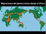 migraciones del g nero homo desde el frica