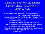 catastrophe factors and rescue factors many concentrate at mt plus ends