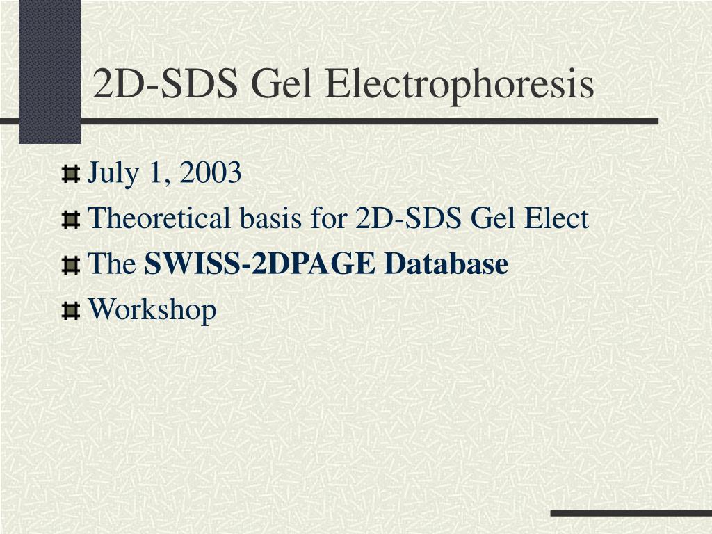 2d sds gel electrophoresis l.