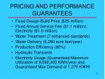 pricing and performance guarantees