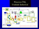 processo tsl unidade industrial