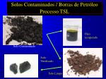 solos contaminados borras de petr leo processo tsl29