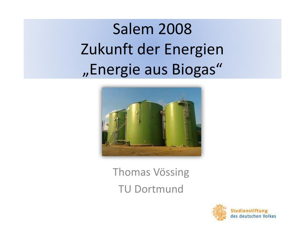 salem 2008 zukunft der energien energie aus biogas l.