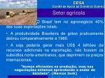 setor agr cola