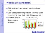what is a risk indicator