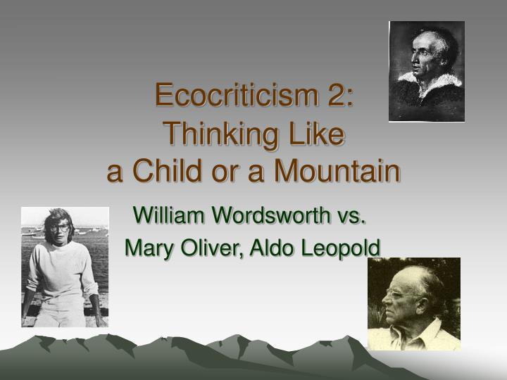 ecocriticism 2 thinking like a child or a mountain n.